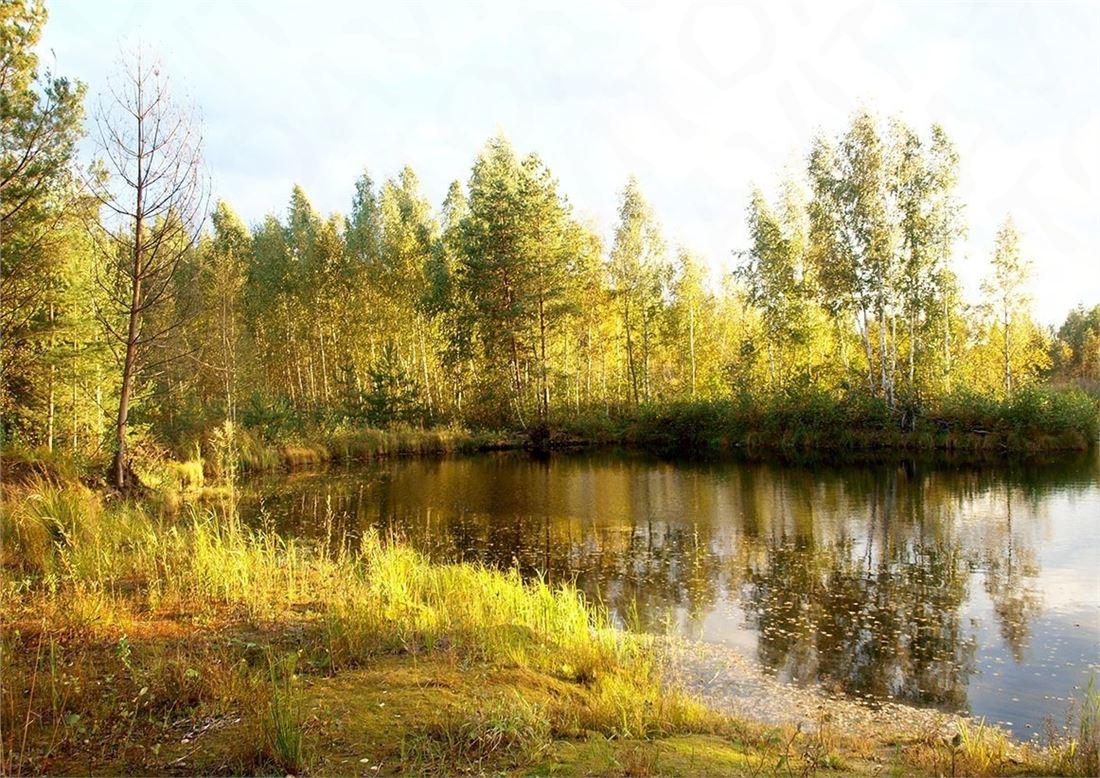id в имлс 1155291 продается жилой дом в живописнейшем месте в ярославском районе терр ...